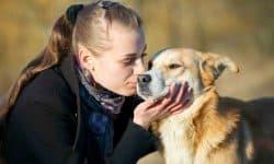 Σεμινάριο Εκπαίδευσης Σκύλων για το Κοινό