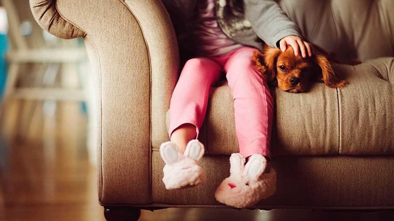 Οι σκύλοι μας κάνουν καλύτερους ανθρώπους
