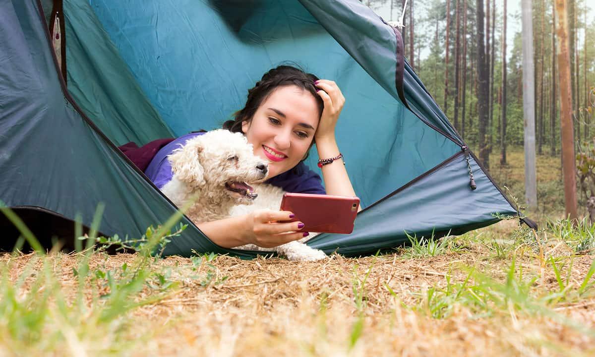 Σκύλοι και Διαδίκτυο - Θετική Εκπαίδευση Σκύλων