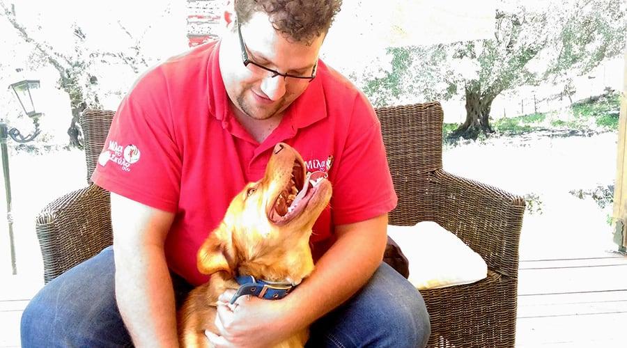 Υπακοή σε εντολές και υποδείξεις - Θετική Εκπαίδευση Σκύλων
