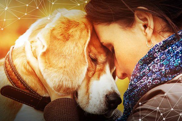 Πείτε στον σκύλο σας «σ' αγαπώ» στη γλώσσα του - Ψυχολογία σκύλων - Μίλα στο Σκύλο σου