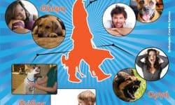 Ζώντας με Σκύλους και Ανθρώπους (Σεμινάριο)